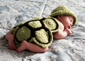 3-weeks turtle
