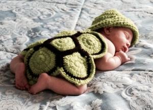 3-weeks turtle
